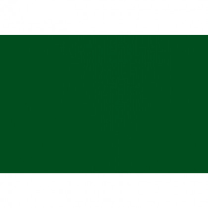 Бумага пастельная А3 Elle erre/CartaCrea 220 г /темно-зеленый