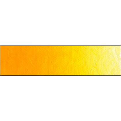 Шевенинген жёлтый тёмный/краска масл. худож. Old Holland