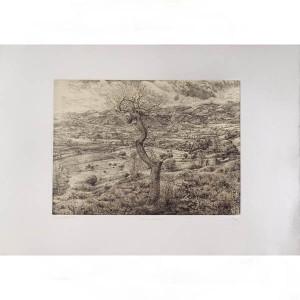Бумага Rosaspina белая 70x100см, для всех видов печати 285 г