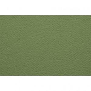 Бумага для пастели 50х65 Tiziano 160 г /салатовый теплый