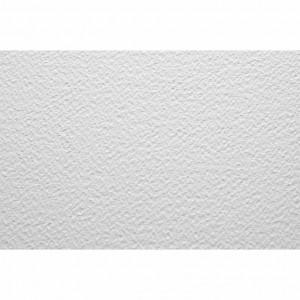 Бумага для пастели 70х100 Tiziano 160 г /белая