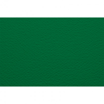 Бумага для пастели 70х100 Tiziano 160 г /зеленый